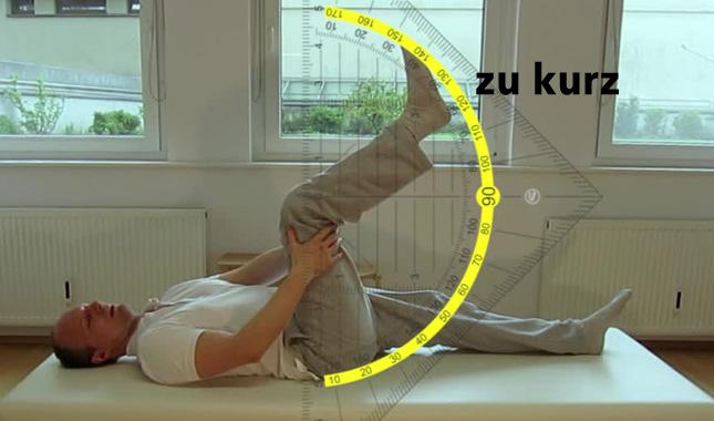 hamstrings_zu_kurz